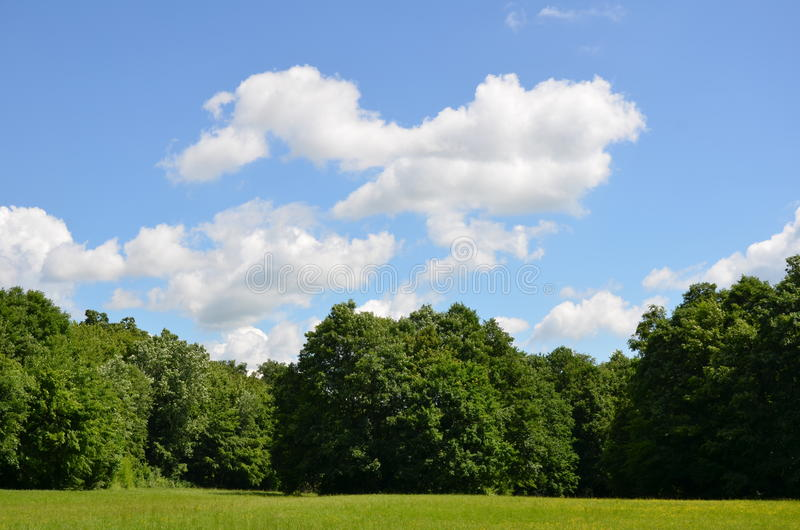 Wolken over het meest forrest royalty-vrije stock afbeelding