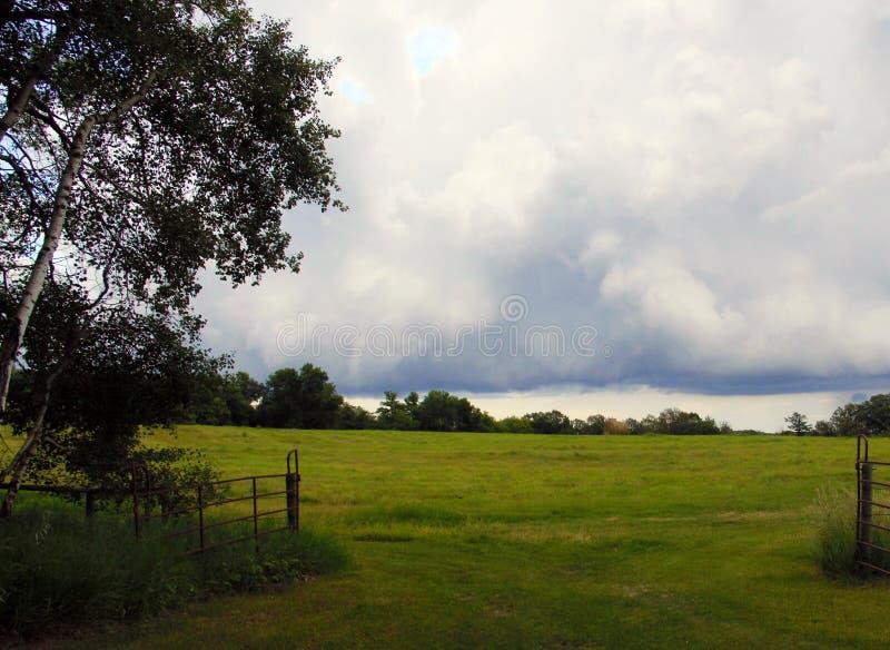Wolken over prairieweiland, zuidelijk Manitoba stock foto