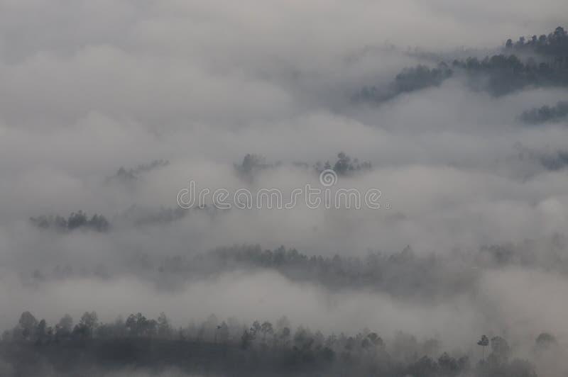 Wolken, welche die Berge bei Kausani, Indien klettern lizenzfreie stockfotos