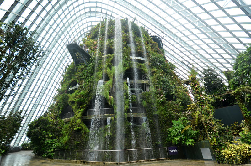 Wolkenbos bij Tuinen door de Baai in Singapore stock foto