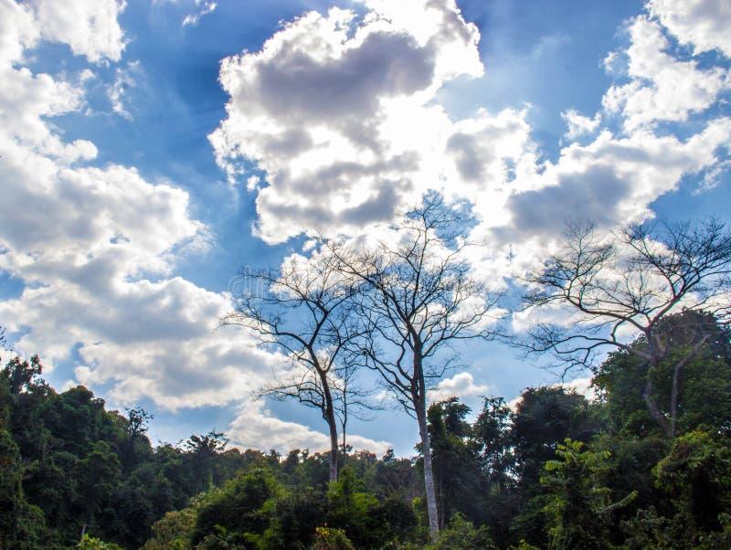 Wolkendekking stock foto's