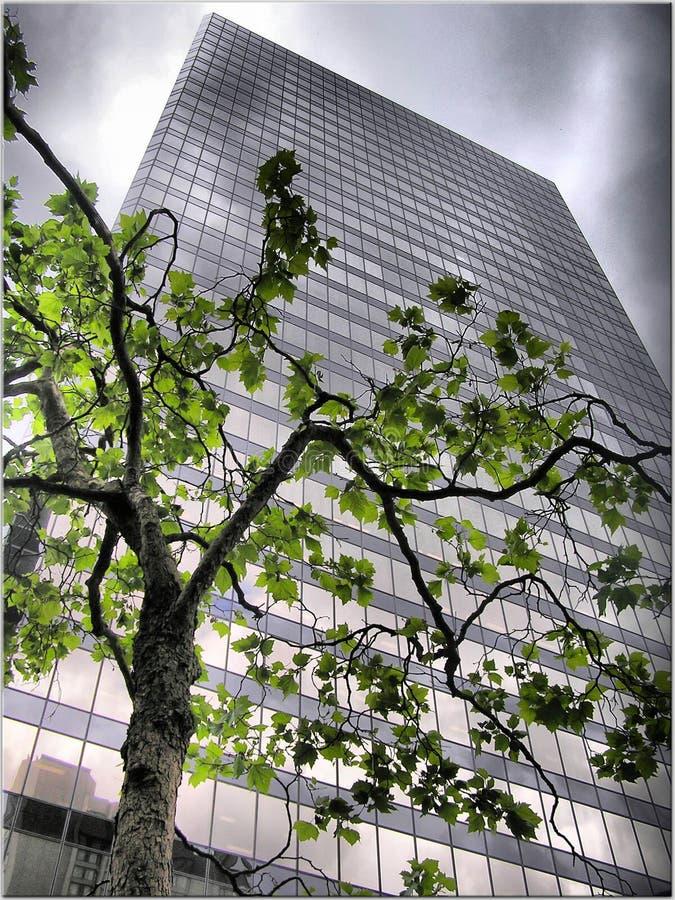 Wolkenkrabber in de stedelijke stad stock afbeelding