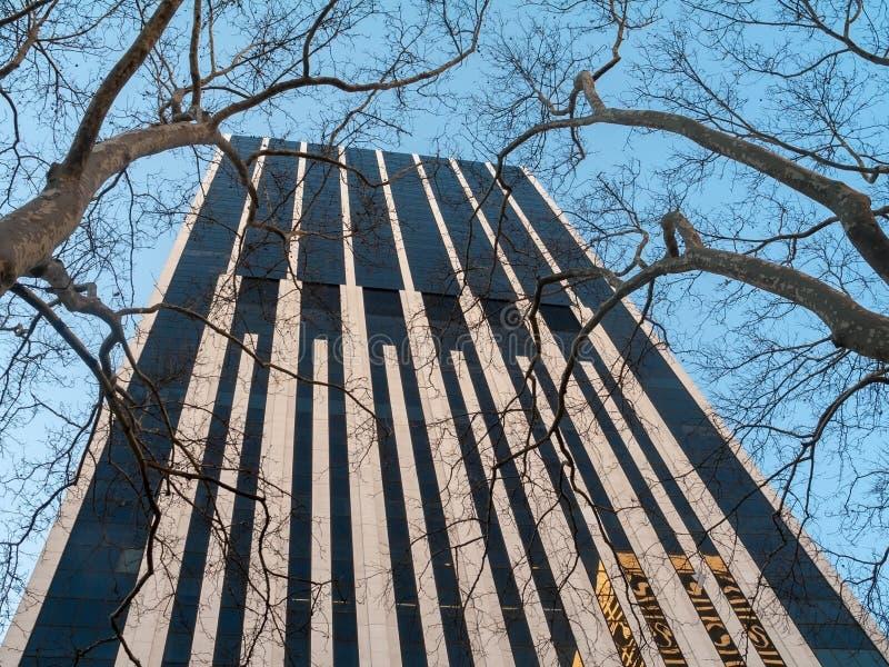 Wolkenkrabber en bomen stock foto's