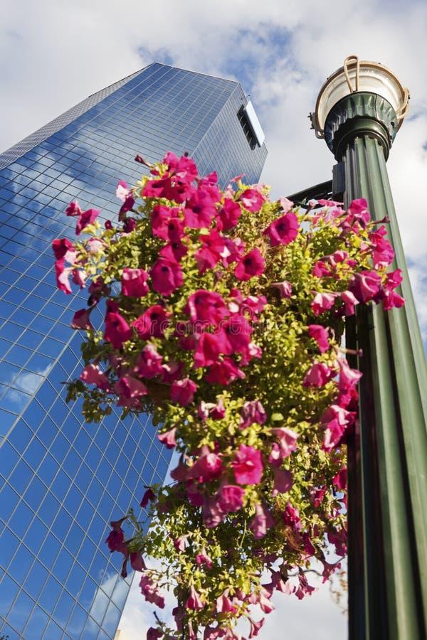 Wolkenkrabber in Lexington stock afbeeldingen