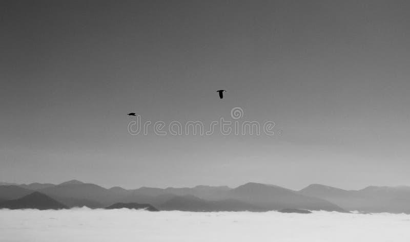 Wolkenumstellung von den Bergen slowakei stockfotos