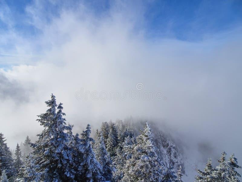 Wolkenvoorzijde over de sneeuwboombovenkanten royalty-vrije stock afbeeldingen