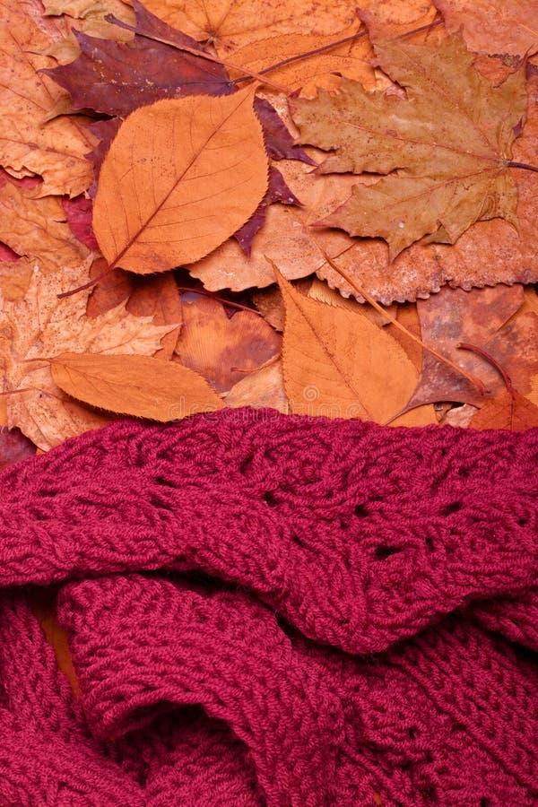 Wollen sjaal stock afbeelding