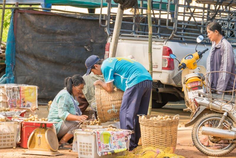 Wollongong bönder säljer deras produkter till att köpa för affärsmän Under skördsäsongen Wollongong royaltyfria foton