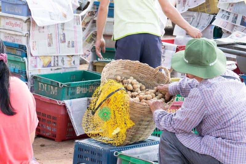 Wollongong bönder säljer deras produkter till att köpa för affärsmän Under skördsäsongen Wollongong royaltyfri bild