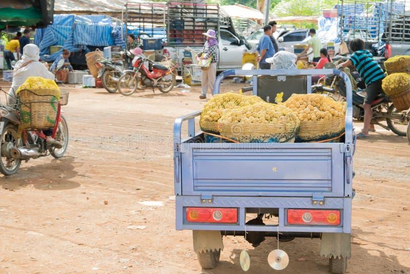 Wollongong bönder säljer deras produkter till att köpa för affärsmän Under skördsäsongen Wollongong royaltyfria bilder