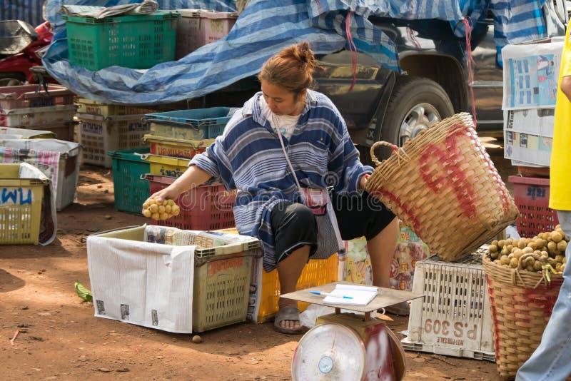 Wollongong rolnicy sprzedają ich produkty handlowów kupować Podczas żniwo sezonu, Wollongong obrazy stock