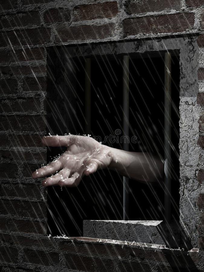 Wolność deszcz ilustracji