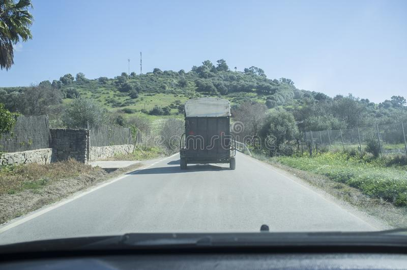 Wolny konia transport na lokalnej drodze zdjęcia royalty free