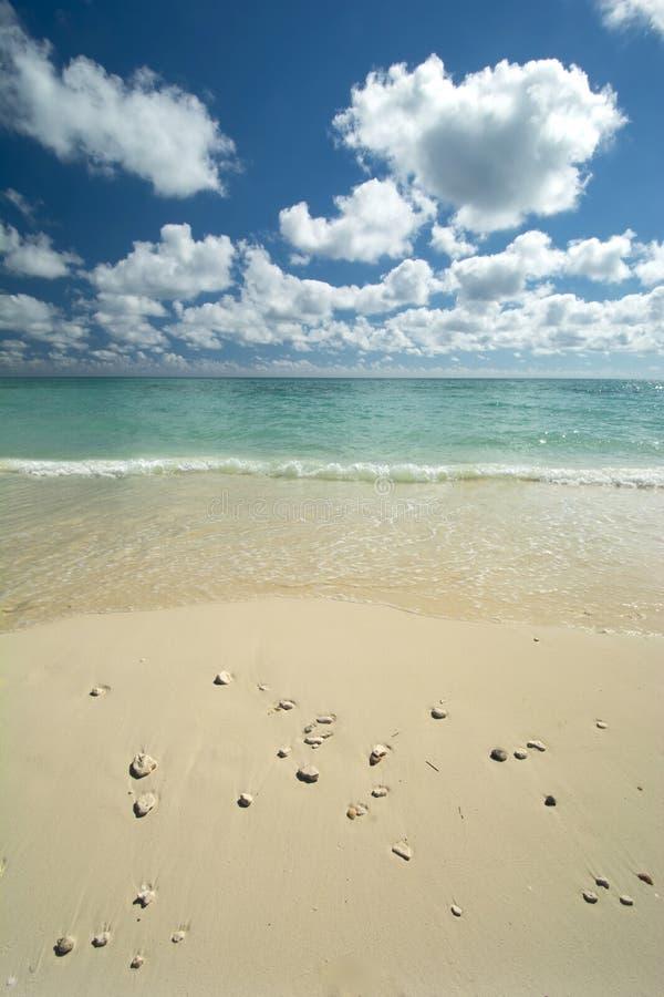 Wolny port plaża, Uroczysta Bahama wyspa obrazy royalty free