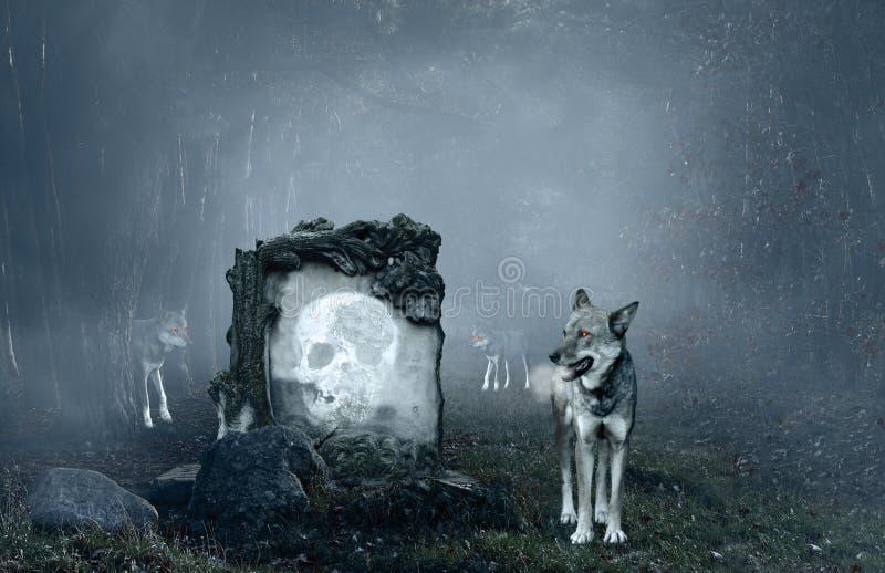 Wolven die een oud graf bewaken stock afbeeldingen