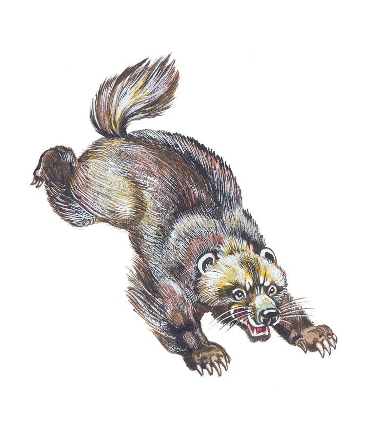 Wolverine illustration de vecteur