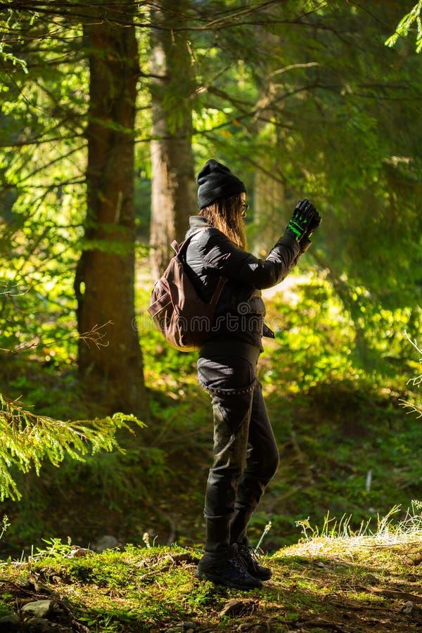 Woma die foto's met cellphone in het bos nemen stock afbeelding