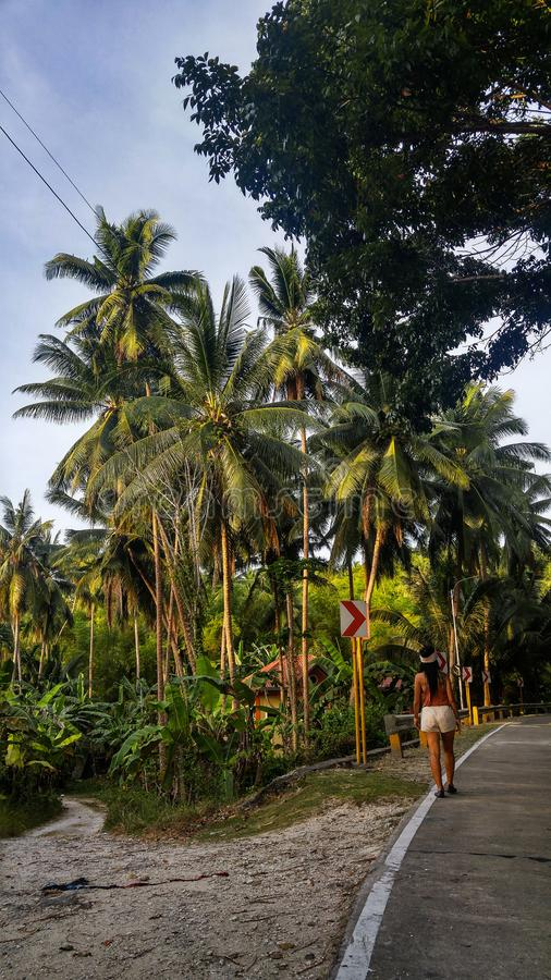 Woman alone at the road with palm trees in Cebu Island. Woman walking alone at the empty road with lots of palm trees in Cebu Island in Philippines royalty free stock images
