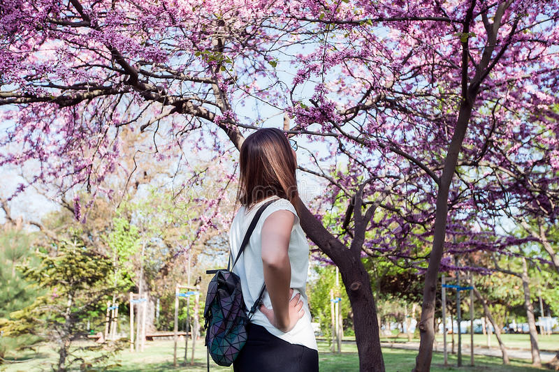 Woman on amazing blooming tree background.Stylish backpack,spring colors,brunette girl in a park,resting,white shirt,back portrait royalty free stock image