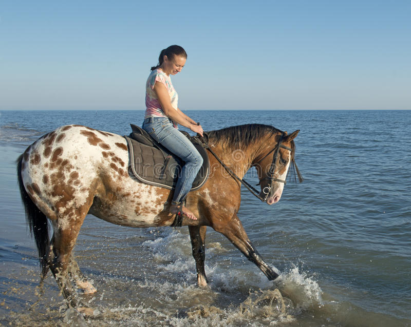 Woman and appaloosa horse stock image