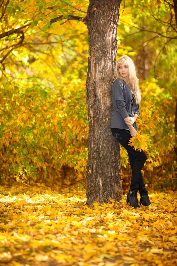 Woman and Autumn stock photos
