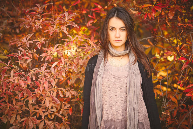 Woman in autumn day. Near red bush royalty free stock image