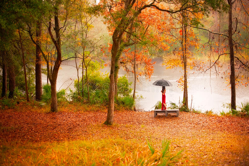 Woman in autumn forest. Woman under umbrella in autumn forest stock photo