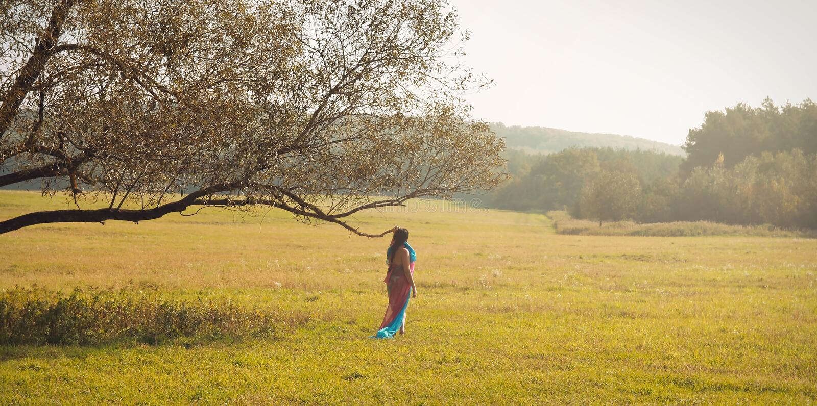 Woman on Autumn Meadow stock images