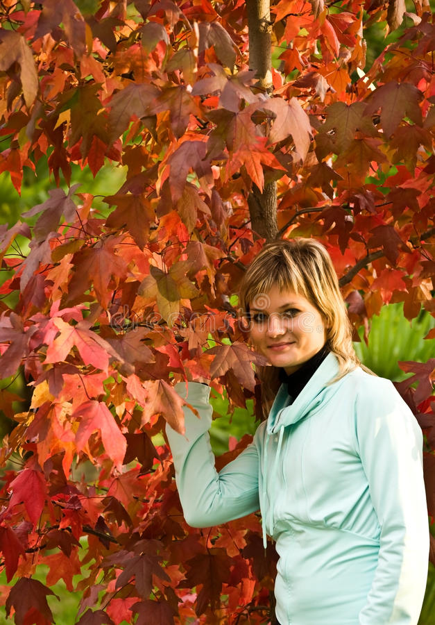 The woman and an autumn tree stock photos