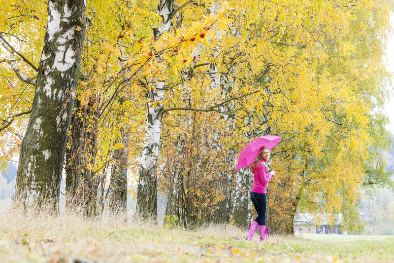Download Woman in autumnal nature stock photo. Image of fall, tree - 27009980