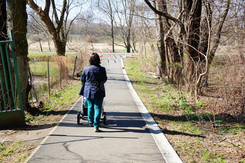 Woman with baby buggy. Woman walking with a baby buggy on a footpath at a park royalty free stock image