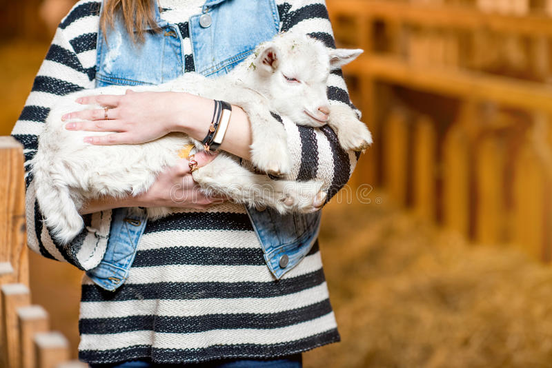 Woman with baby goat. Young women holding cute baby goat standing indoors at the barn royalty free stock images