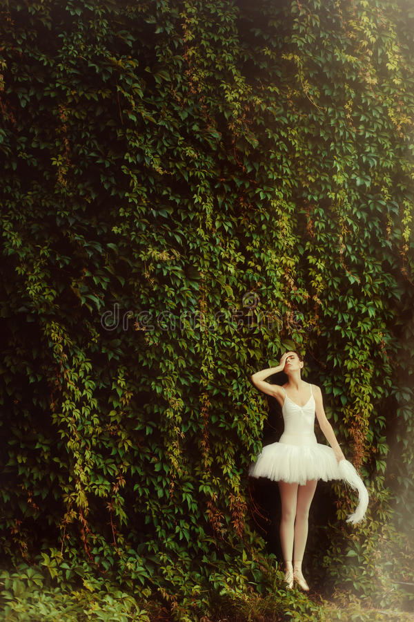 Free Woman Ballerina In A White Dress In A Park. Stock Photos - 97072683
