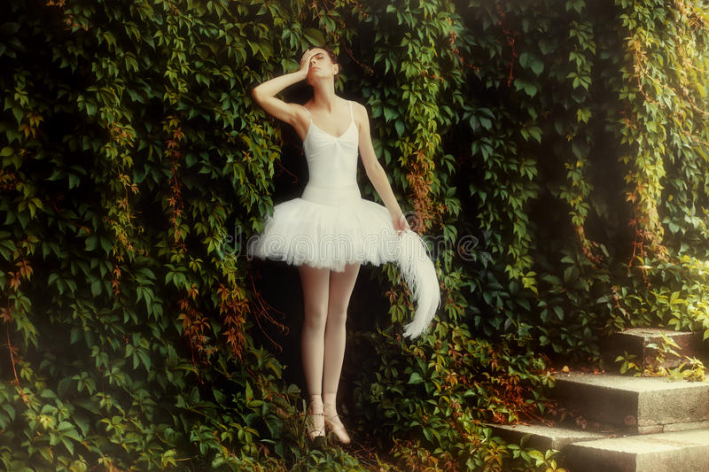 Woman ballerina in a white dress is standing in a sensual pose. stock photo