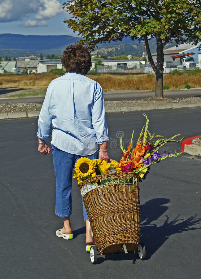 Download Woman With Basket Cart With Flowers Stock Photo - Image: 1105464
