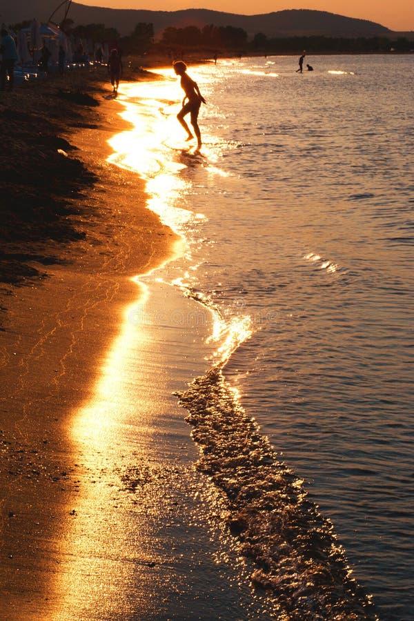 Download Woman on beach stock photo. Image of coast, running, ocean - 22881280