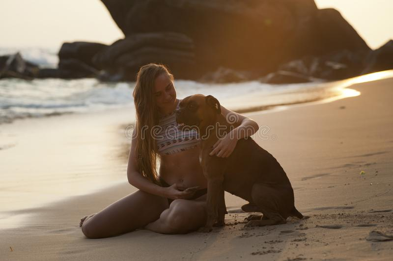 Woman on beach with dog royalty free stock image