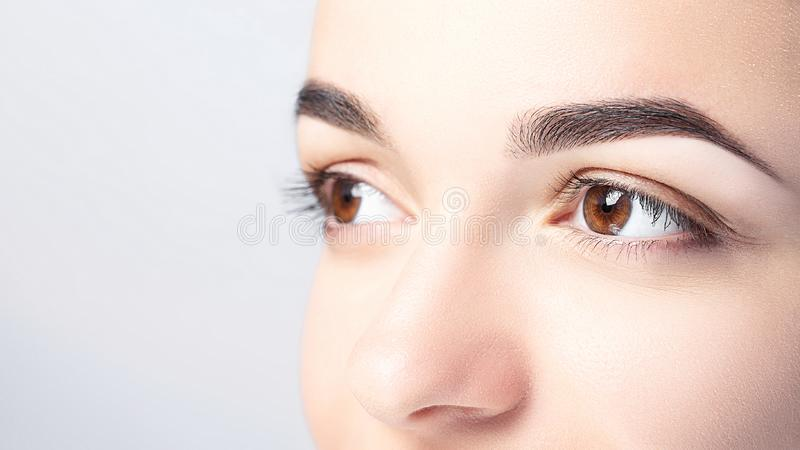 Woman with beautiful eyebrows close-up on a light background with copy space. Microblading, microshading, eyebrow tattoo, henna, royalty free stock photography