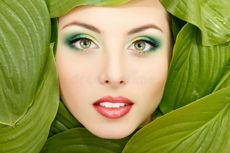 Woman beauty face with green leaves frame on white stock images
