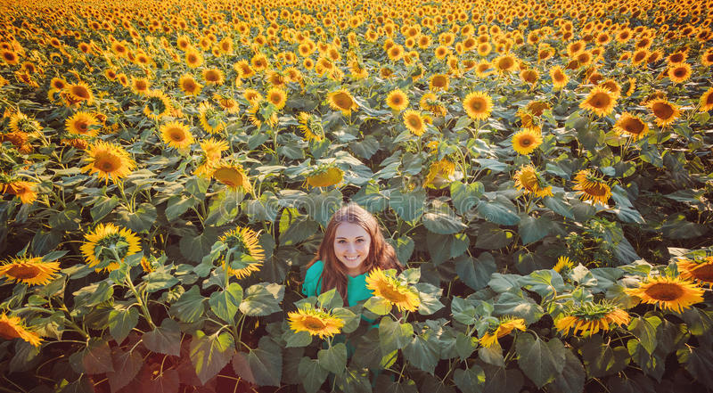 Woman in beauty field with sunflowers royalty free stock photography