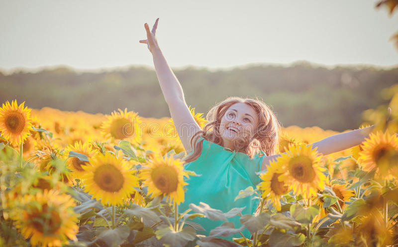 Woman in beauty field with sunflowers royalty free stock photo