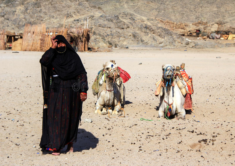 Woman Bedouin in black clothes against the background of lying camels. royalty free stock photography