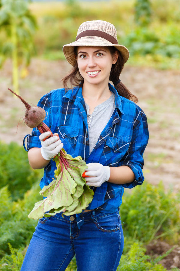 Woman with beetroot in garden royalty free stock photos