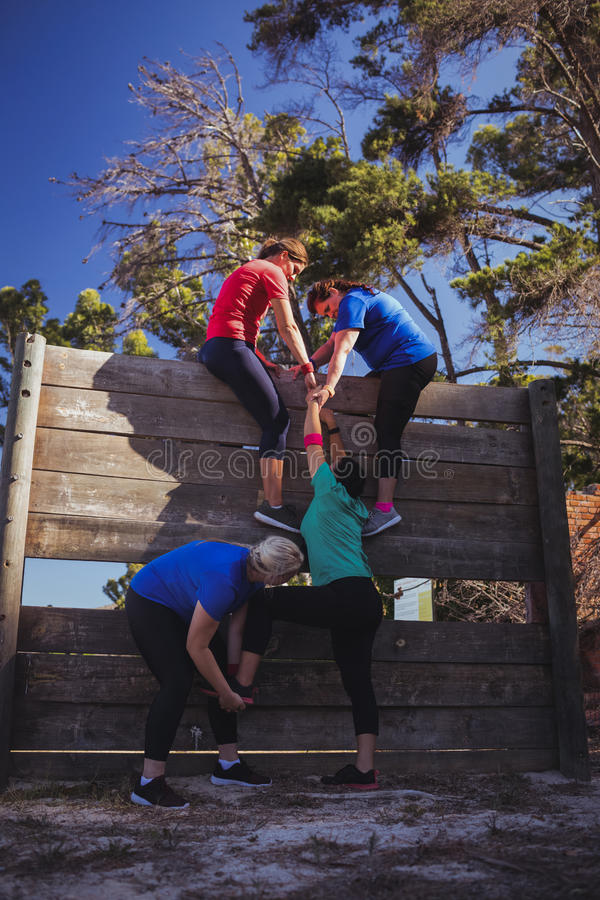 Woman being assisted by her teammates to climb a wooden wall during obstacle course training stock photos