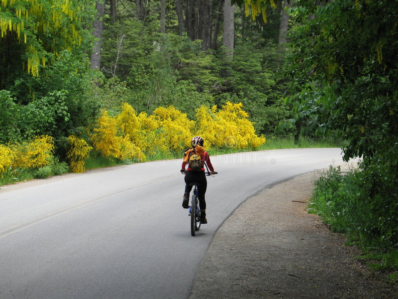 Woman On A Bicycle. Woman Riding A Bicycle - Bariloche - Argentina royalty free stock photos