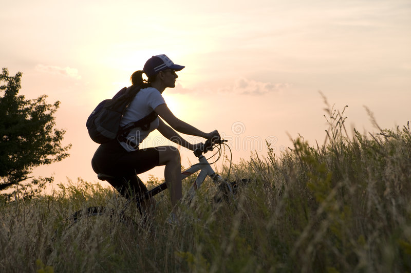 Download Woman on the bicycle stock photo. Image of muscular, bicycle - 5425662