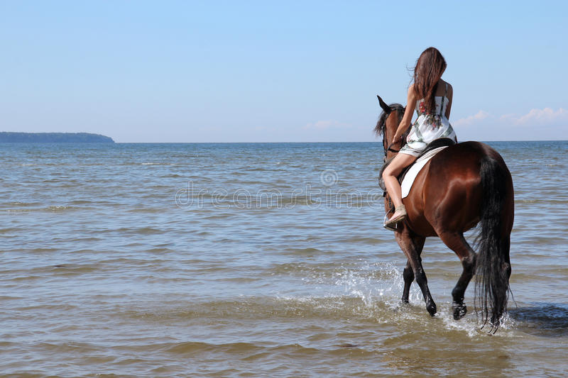 Woman with big brown horse royalty free stock images