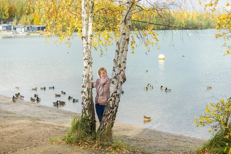 A woman between the birches stock images
