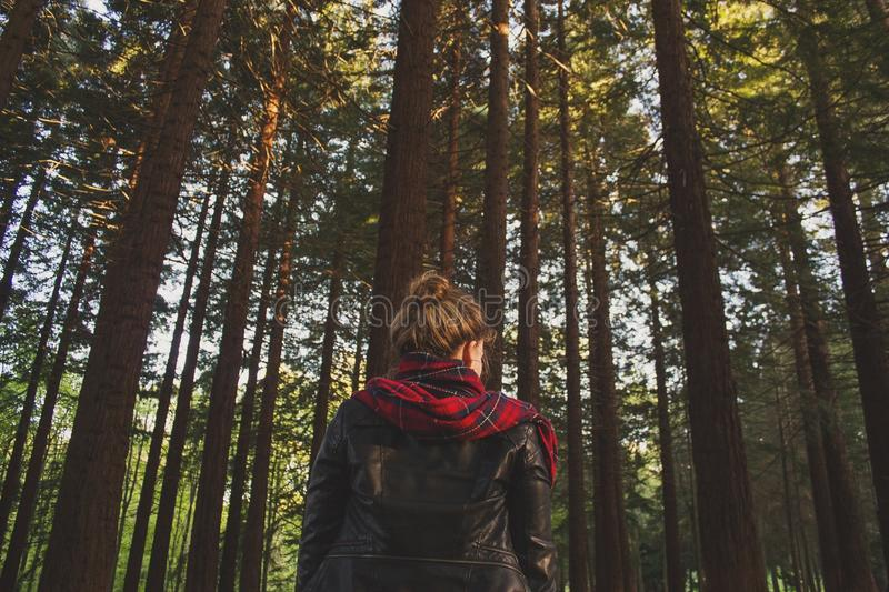 Woman In Black Red Jacket In The Middle Of The Woods During Daytime Free Public Domain Cc0 Image