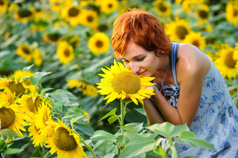 Woman on blooming sunflower field. Young beautiful woman on blooming sunflower field in summer royalty free stock images
